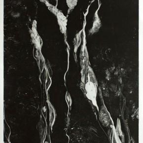 Ellen Hausner Painter Oxford Untitled (Monoprint series 2A) (monoprint on paper), 2012