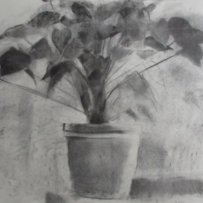 Ellen Hausner Painter Oxford Still Life with Flowers (charcoal on paper), 2012